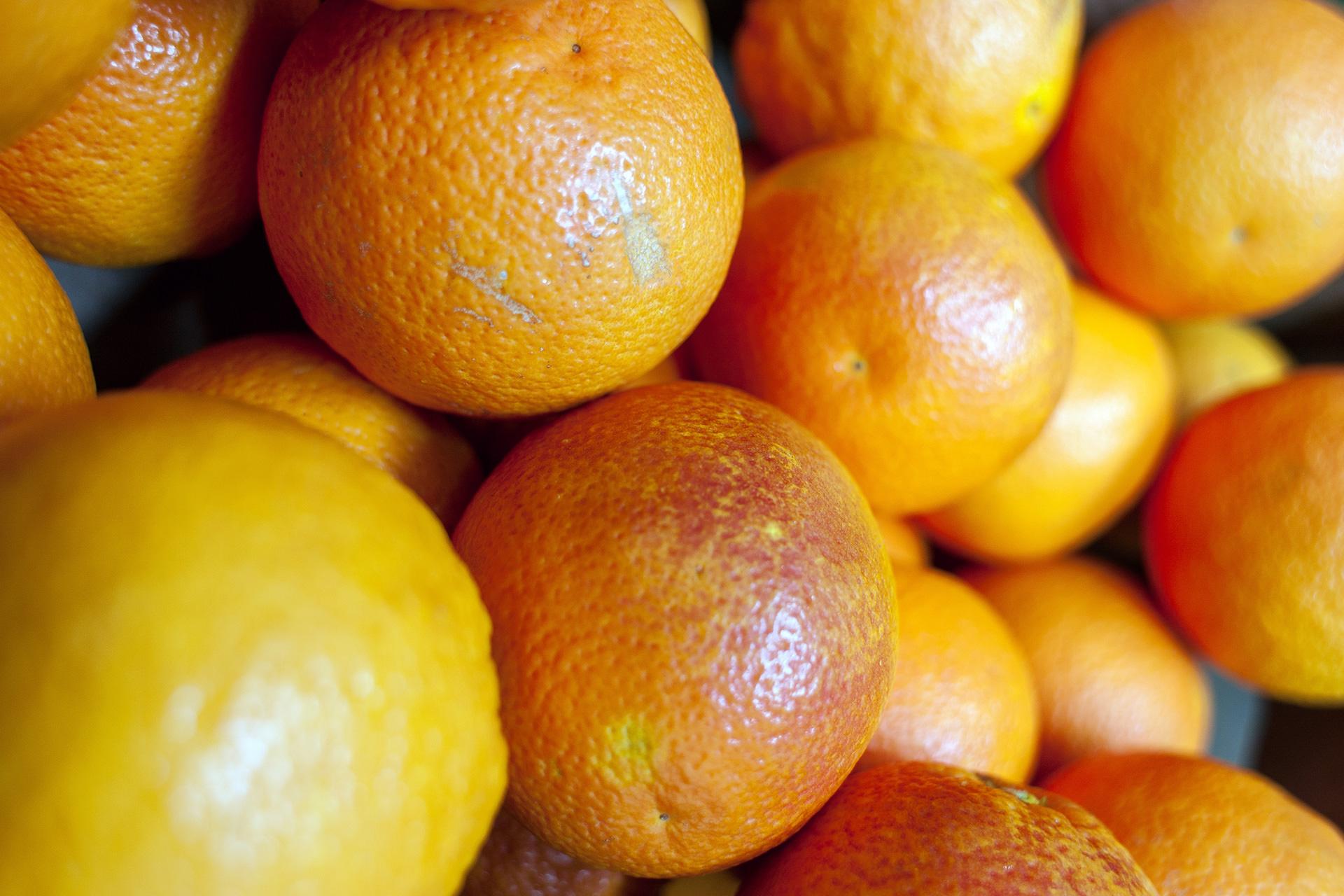 Reg. 8 – Südfrüchte
